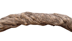 Wooden olive log isolated Royalty Free Stock Photo