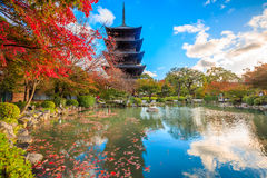 Wooden pagoda of Toji temple, Kyoto royalty free stock images