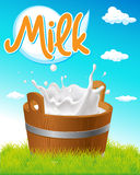 Wooden pail with milk tag, green grass Royalty Free Stock Images