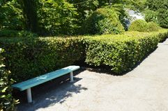 Wooden painted bench along the paths in the summer Park on a Sunny day.  royalty free stock images