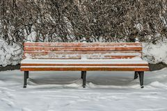 A wooden painted brown color beautiful bench with black wrought-iron legs stands with white snow in a park in winter royalty free stock photos