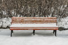 A wooden painted brown color beautiful bench with black wrought-iron legs stands with white snow in a park in winter royalty free stock photo