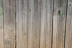Wooden painted wall from boards Royalty Free Stock Image