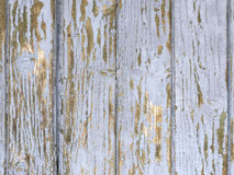 Wooden paintwork background. Royalty Free Stock Photo