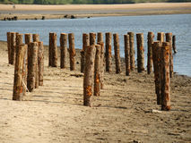 Wooden pales at the beach Royalty Free Stock Photos