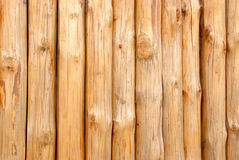 Wooden paling. From the sharp raw logs Royalty Free Stock Photo