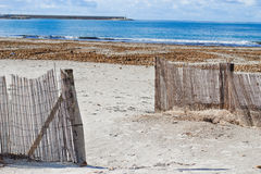 Wooden palisades by the beach Royalty Free Stock Photos