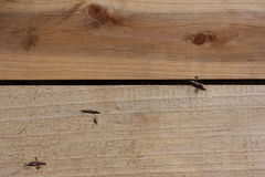 Wooden panel for background usage Royalty Free Stock Photography