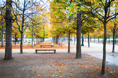 Wooden park  in autumn Royalty Free Stock Images