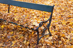Wooden park bench ad yellow autumn leaves Royalty Free Stock Photo