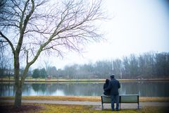 Wooden park bench in the day royalty free stock photography