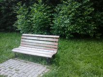 Wooden park bench Stock Image