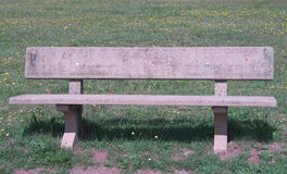 Wooden park bench at a park Royalty Free Stock Images
