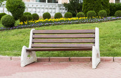 Wooden park bench at a park. Threes Royalty Free Stock Photos