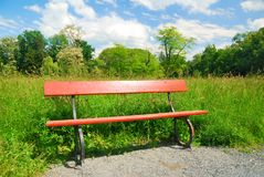 Wooden park bench in springtime greenery Stock Image