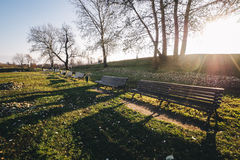 Wooden park bench in a sunny day Royalty Free Stock Photos