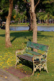 Wooden park bench under tree and near a lake Stock Photography