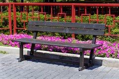 Wooden park benchs outdoor Stock Photos