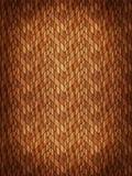 Wooden parquet Royalty Free Stock Photos