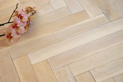 Wooden parquet floor Stock Images