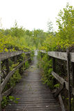 Wooden passage Stock Photography