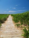 Wooden Path Stock Photo