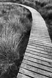 Wooden path. In a meadow royalty free stock images