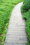 Wooden path Stock Photos