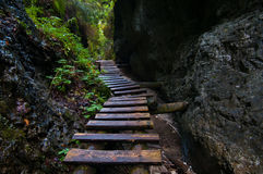 Wooden Path. Through a canyon in Slovak Paradise, a national park in Slovakia Royalty Free Stock Photo