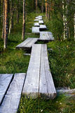 Wooden path Royalty Free Stock Image