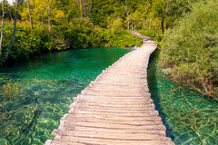 Wooden path across lake Stock Photography