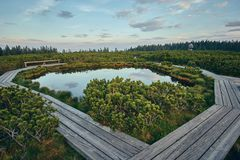 Free Wooden Path At Lovrenska Lakes With The Tower In The Background Royalty Free Stock Images - 152007549