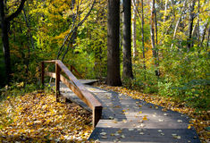 Wooden path in autumn park. Wooden path with a handrail, covered with the yellow leaves, passing through autumn park Stock Images