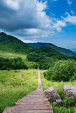 Wooden path. A wooden path in Baihua mountain in Beijing Stock Photography