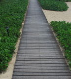 Wooden path in beach royalty free stock photo