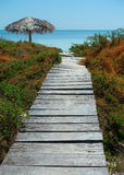 Wooden path and beach Royalty Free Stock Photos