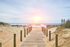 Wooden path on the beach with ocean view. Portugal Royalty Free Stock Photo
