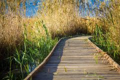 Wooden path in a bird observatory, in the wetlands natural park La Marjal in Pego and Oliva. Spain stock photos