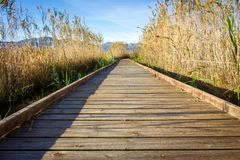 Wooden path in a bird observatory, in the wetlands natural park La Marjal in Pego and Oliva. Spain stock image