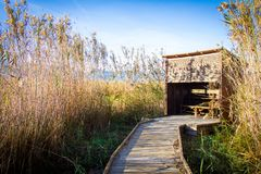 Wooden path in a bird observatory, in the wetlands natural park La Marjal in Pego and Oliva. Spain royalty free stock photos