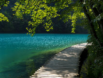 Wooden path close to lake Stock Image