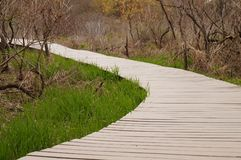 Wooden path close up. Wooden path close up in spring Royalty Free Stock Image