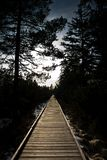 Wooden path at dawn royalty free stock photo