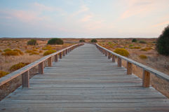 Wooden path in the dunes. Algarve, Portugal Royalty Free Stock Photography
