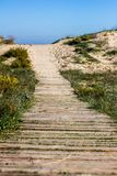 Wooden path through the dunes stock photos