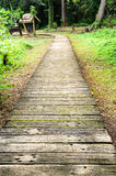 Wooden path through the forest. Royalty Free Stock Photography