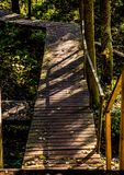Wooden path in the forest royalty free stock photography