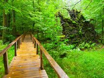 Wooden path Royalty Free Stock Photography