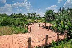 Wooden path in garden Stock Photo