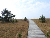 Wooden path going to sea, Lithuania Royalty Free Stock Images